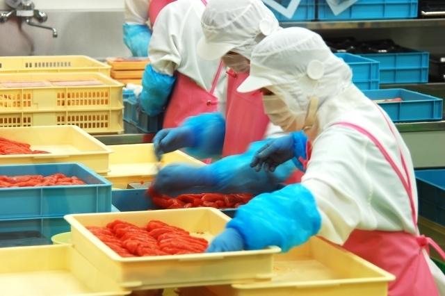 食品工場アルバイトの体験談