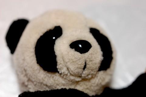 パンダの着ぐるみアルバイト体験談